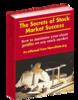 Thumbnail Stock Market Trading Secrets